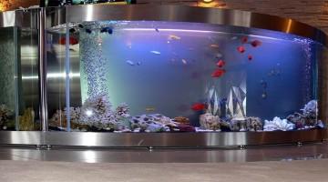 Прочные аквариумы из оргстекла