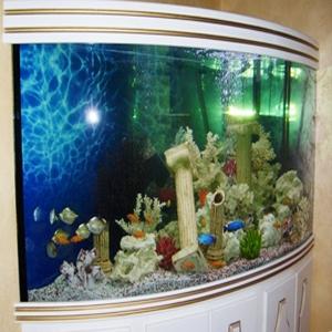 Преимущество аквариумов из оргстекла перед другими видами